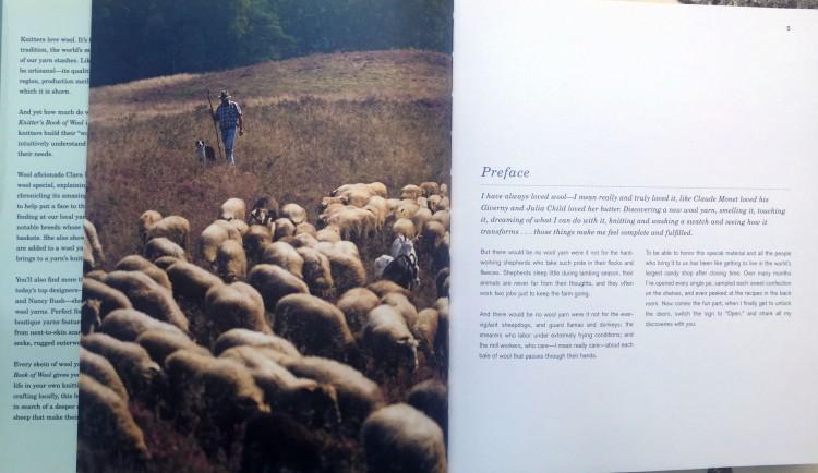 cptr1_sheep
