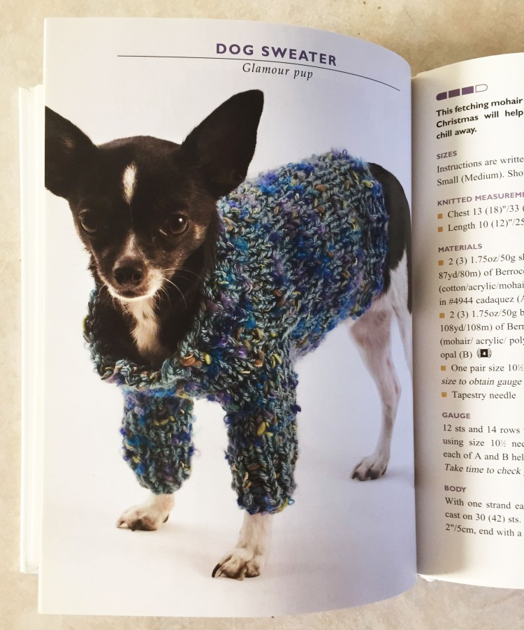 dog_sweater